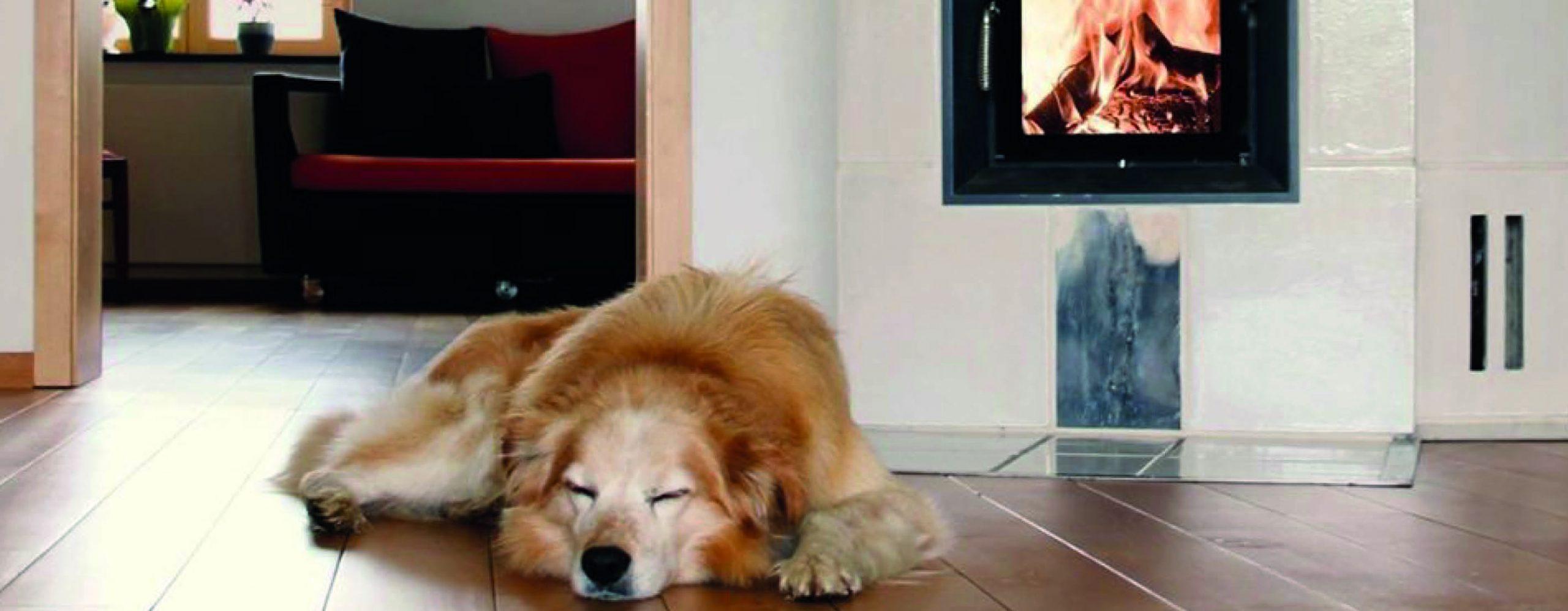 Hund liegt vor Ofen